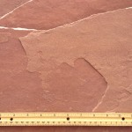 BUCKSKIN ROSE Arizona Flagstone